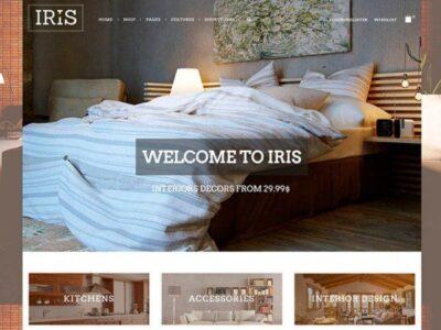 iris-800-665×450-600×450